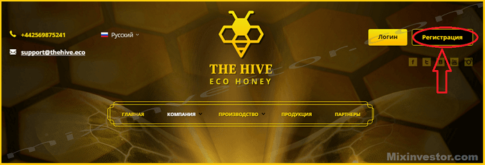 Thehive Eco
